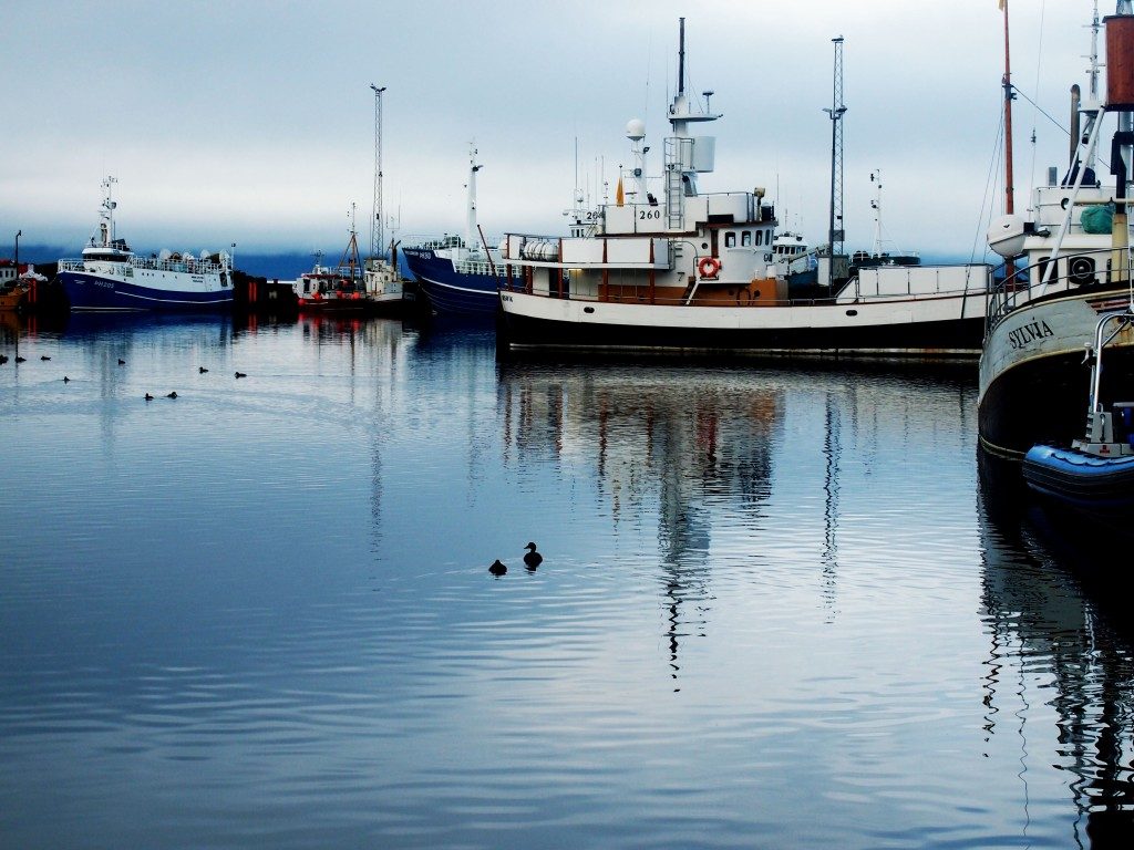 Húsavík Islande - Les Gourmondises