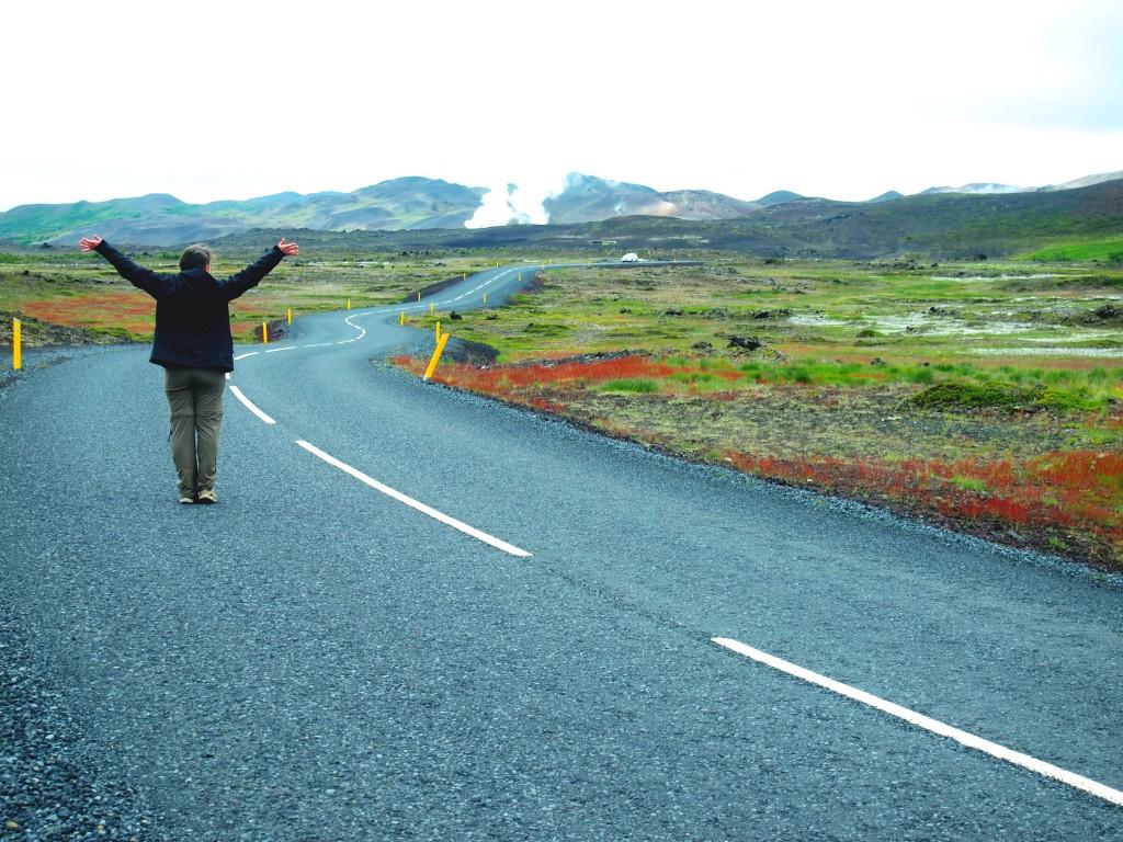 islande se deplacer - les gourmondises
