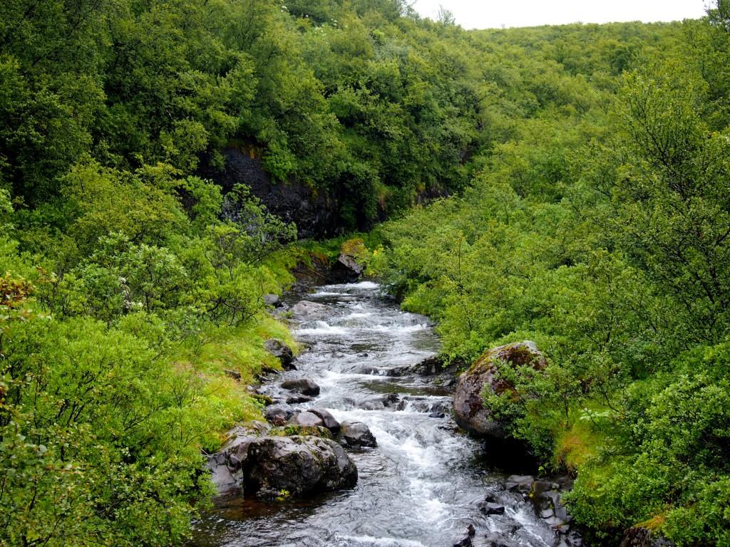 Skaftafell Islande - Les Gourmondises