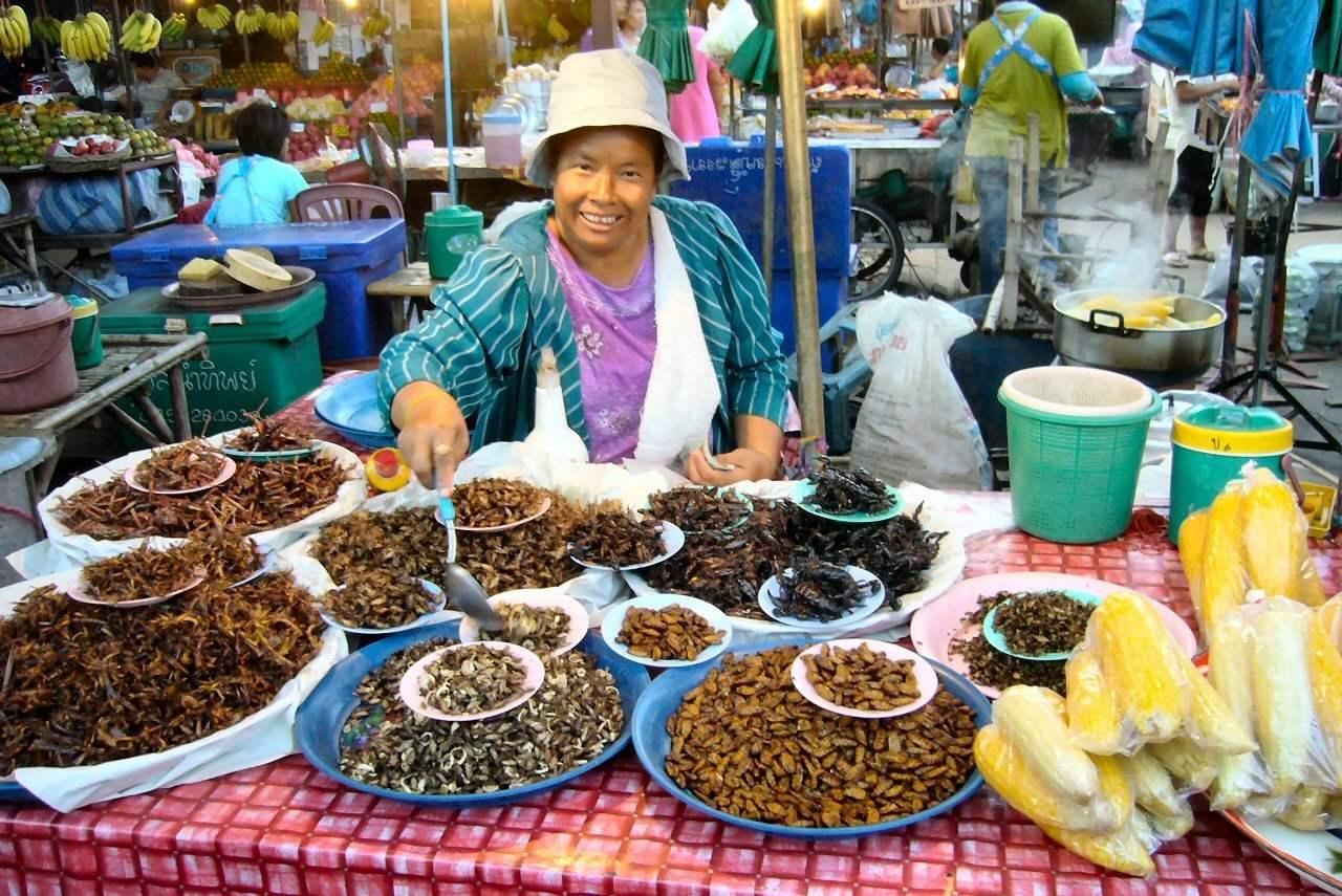 insectes - les gourmondises - 12 plats traditionnels